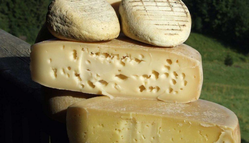 selezione di formaggi di Malga Alta Carnia