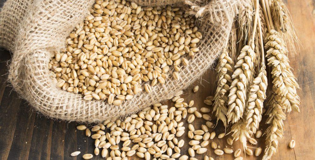 grano in un sacco di iuta