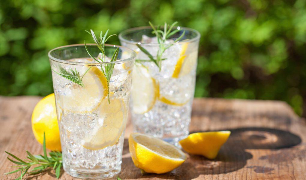 gin fizz con rosmarino e limone ricetta per cocktail